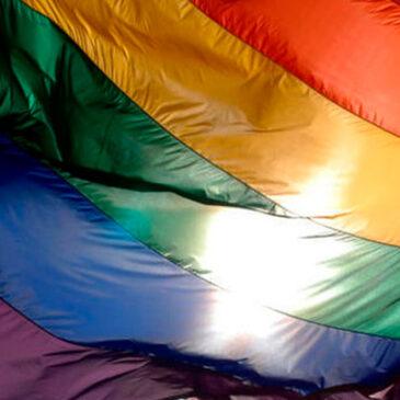Día del activismo por la diversidad sexual